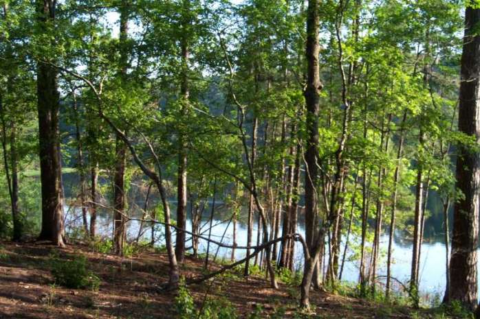 Sabine National Forest - Indian Mounds Wilderness Recreation Area