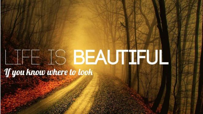 life-is-beautiful-gurbaksh-chahal